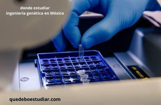 donde estudiar ingeniería genética en México