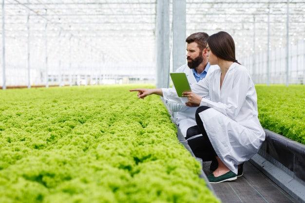 donde estudiar ingeniería de alimentos en Colombia